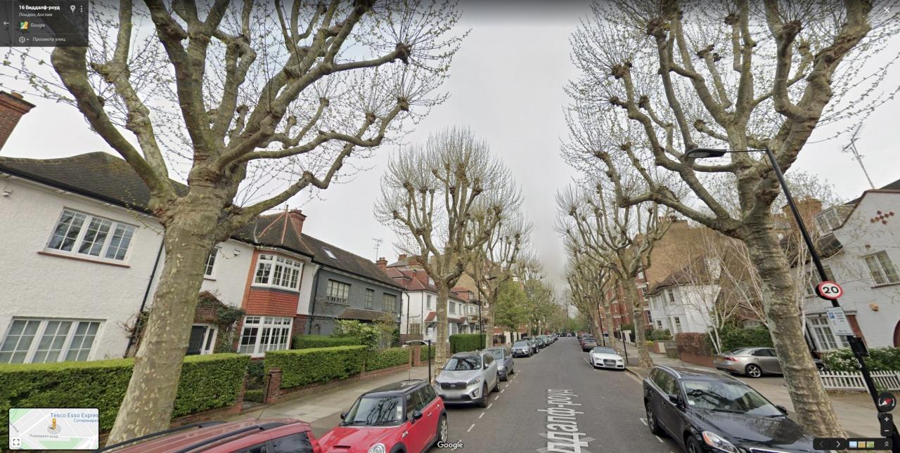Обрезка деревьев в Лондоне.jpg